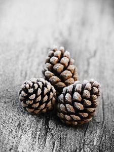 Frosted Pine Cones on Rustic Wooden Table by James Guilliam
