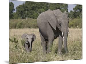 African Elephant Mother and Young, Masai Mara National Reserve by James Hager