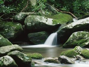 Cascade, Great Smoky Mountains National Park, Unesco World Heritage Site, Tennessee, USA by James Hager