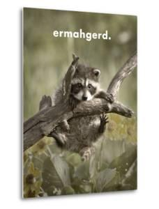 ERMAHGERD by James Hager
