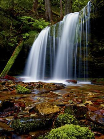 Fern Falls, Coeur D'Alene National Forest, Idaho Panhandle National Forests, Idaho, United States o