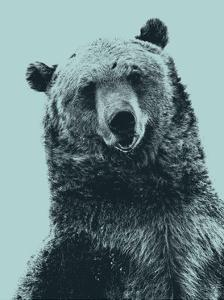 Grizzly Bear by James Hager