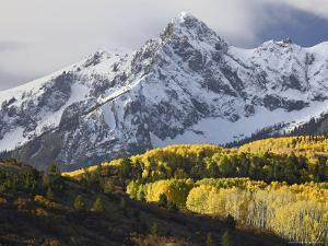 Sneffels Range with Aspens in Fall Colors, Near Ouray, Colorado by James Hager