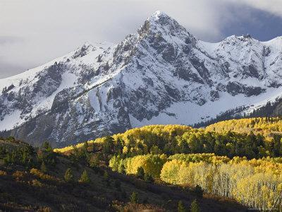 Sneffels Range with Aspens in Fall Colors, Near Ouray, Colorado