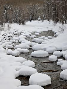 Snow Pillows on the Dolores River, San Juan National Forest, Colorado, USA, North America by James Hager