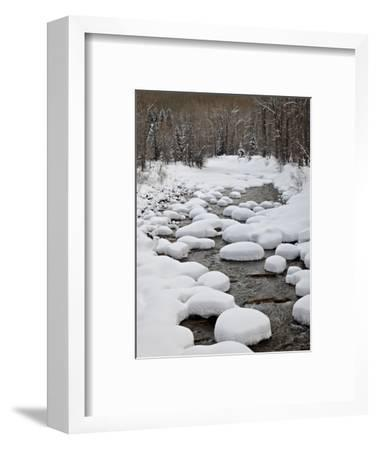 Snow Pillows on the Dolores River, San Juan National Forest, Colorado, USA, North America