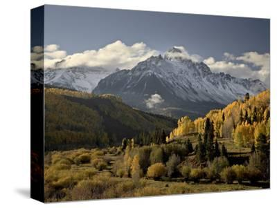 Yellow Aspens and Snow-Covered Mountains, Uncompahgre National Forest, Colorado, USA