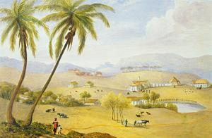 Haughton Court, Hanover, Jamaica, C.1820 (W/C on Paper) by James Hakewill