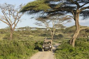 Landscape of the African Savanna with Safari Vehicle, Tanzania by James Heupel