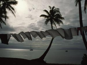 Buca Bay, Laundry and Palm Trees by James L. Stanfield