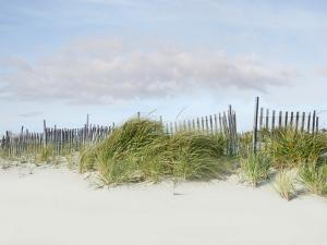 Beachscape IV by James McLoughlin