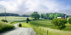 Farm & Country II by James McLoughlin