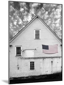 Flags of Our Farmers XVIII by James McLoughlin