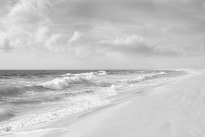 Hamptons V