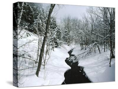 A Winter View of Rush Brook, Camel's Hump State Park, Vermont