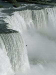 Bird Flies Past American Falls by James P. Blair