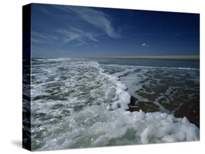 Foamy Atlantic Surf under the Deep Blue Dawn Sky, Assateague Island, Virginia