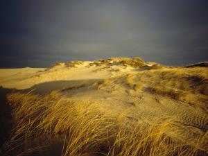 Sand Dunes and Beach Grass, Nauset Beach, Cape Cod National Seashore, Massachusetts by James P. Blair