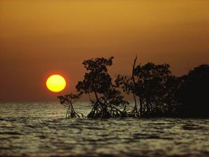 Sunrise in Everglades National Park, Florida by James P. Blair