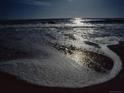 The Atlantic Ocean with Moonlight Reflected on the Foamy Surf, Assateague Island, Virginia