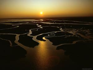 Tidal Creeks Catch the Setting Sun, Cape Romain, South Carolina by James P. Blair