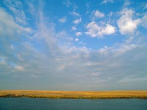 View of the Marsh under a Huge Blue Sky by James P. Blair