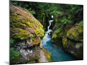 Avalanche Creek by James Randklev