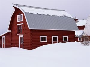 Red Barn in the Snow by James Randklev