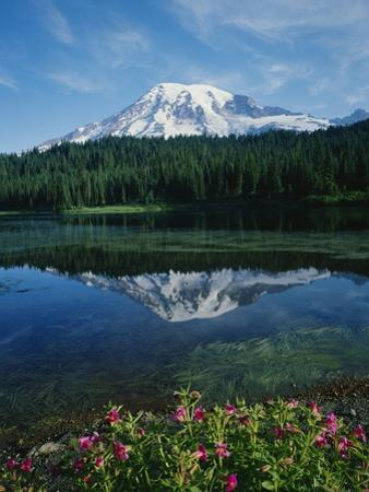 Reflection of Snowcovered Mount Rainier on Reflection Lake