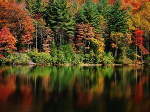 Reflections on Lake Conasauga by James Randklev