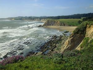 Sonoma Coast by James Randklev