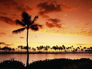 Sunset at Anaehoomalu Bay by James Randklev