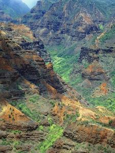 Waimea Canyon by James Randklev