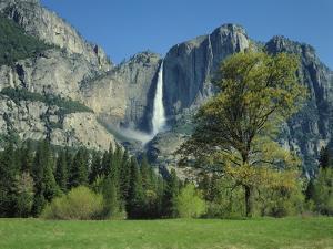 Yosemite Falls by James Randklev