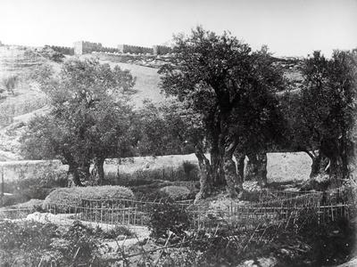 Gethsemane, 1857