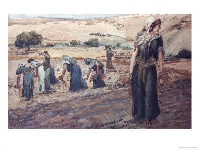 Ruth Gleaning
