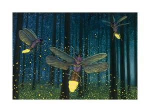 Night Light Flight by James W. Johnson