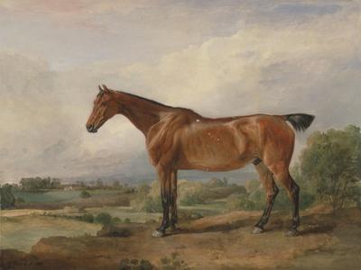 A Hunter in a Landscape, 1810