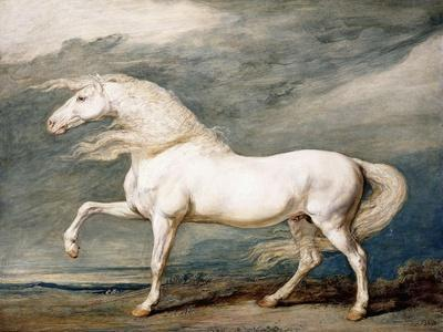 Adonis, King George III's Favourite Charger