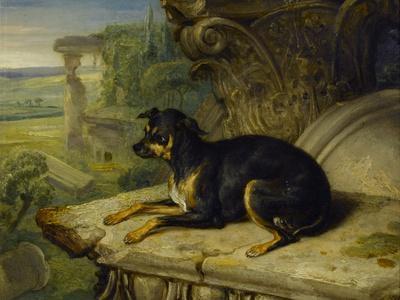 Fanny, a Favourite Dog, 1822