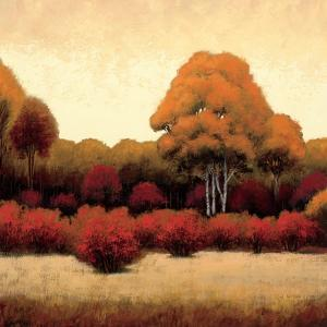 Autumn Forest I by James Wiens
