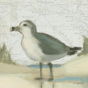 Beach Bird II by James Wiens