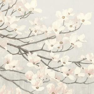 Dogwood Blossoms II Gray by James Wiens