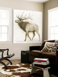 Elk 2 by James Wiens