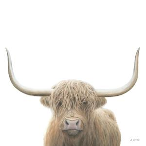 Highland Cow Sepia Sq by James Wiens