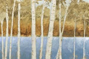 Lakeside Birches by James Wiens