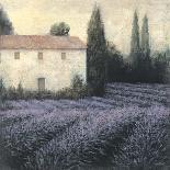 Lavender Field Detail-James Wiens-Art Print