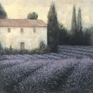 Lavender Field by James Wiens