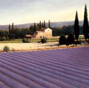 Lavender Fields II Crop by James Wiens