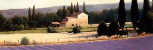 Lavender Fields Panel II by James Wiens